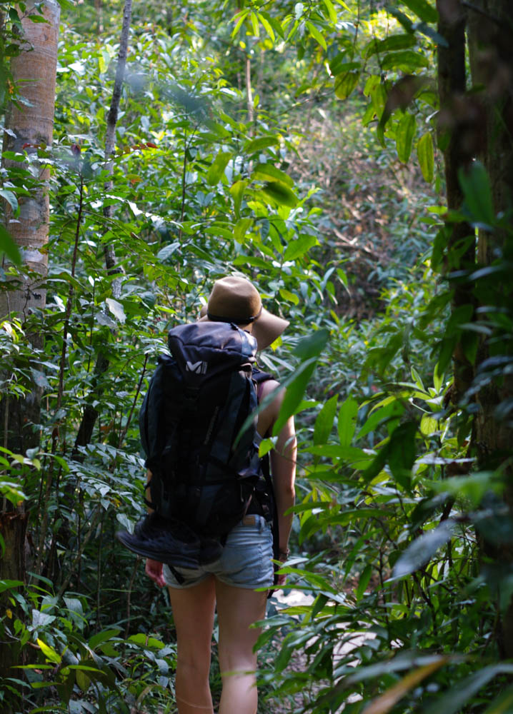 Walking through the jungle to sunset beach