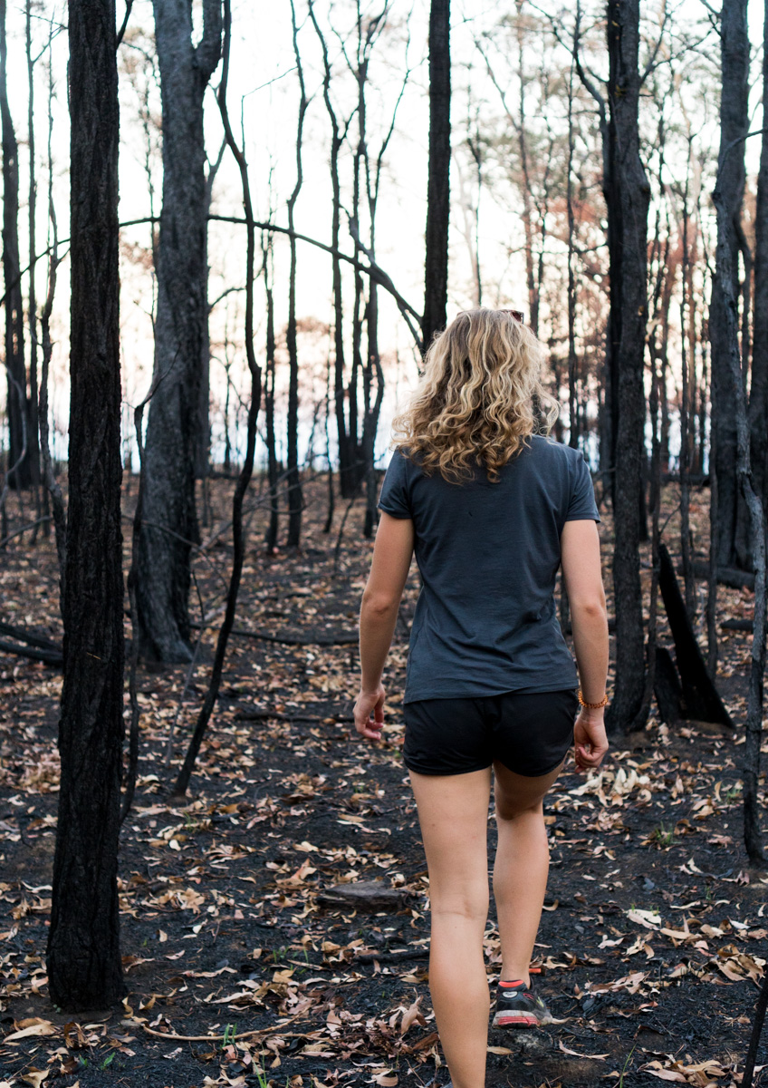 Walking through the burnt bushland at Boolimba Bluff