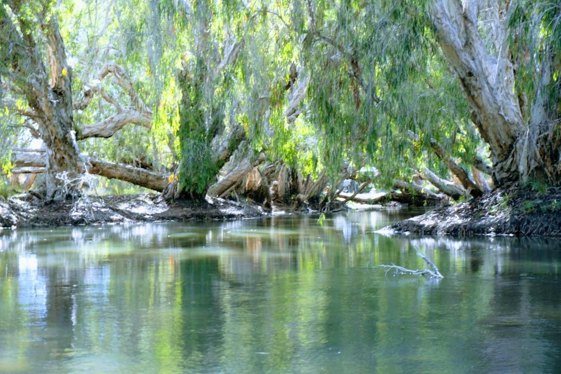 Headwater of the Burdekin River