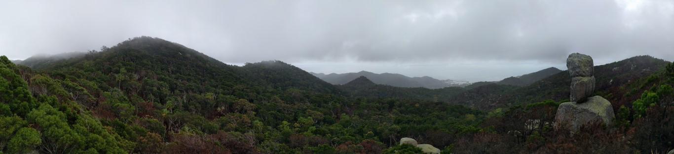 Mt Cook totem pole