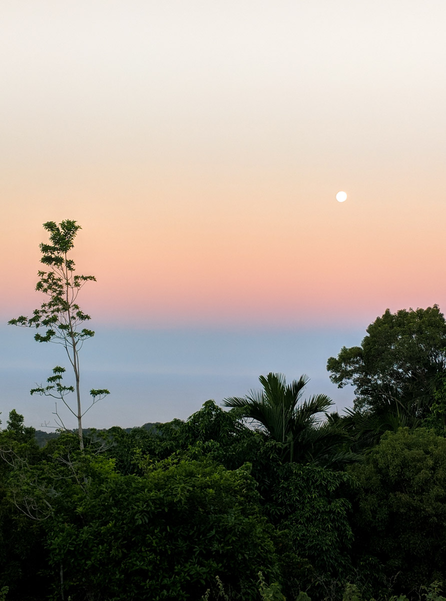 Palm Island moon rise