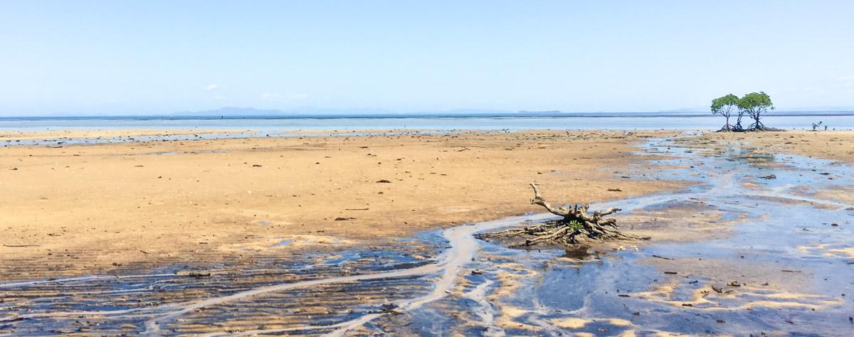 Regina Bay, Palm Island