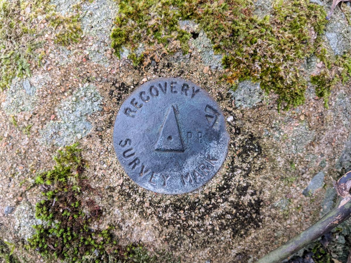 Mt Cataract recovery survery mark