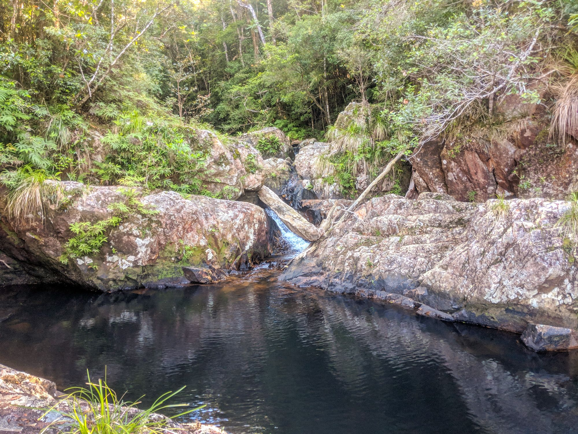 gold creek swimming pool