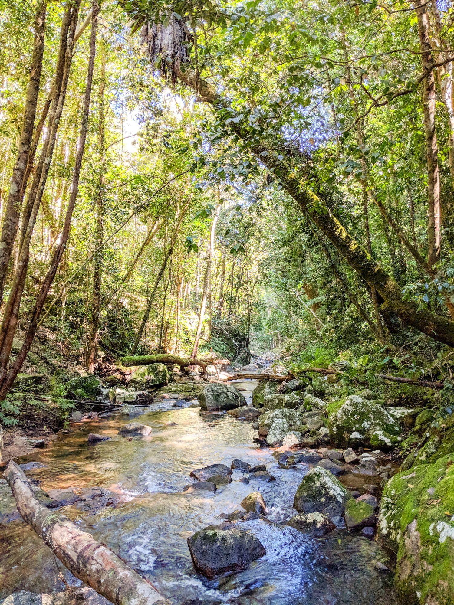 hermit creek paluma