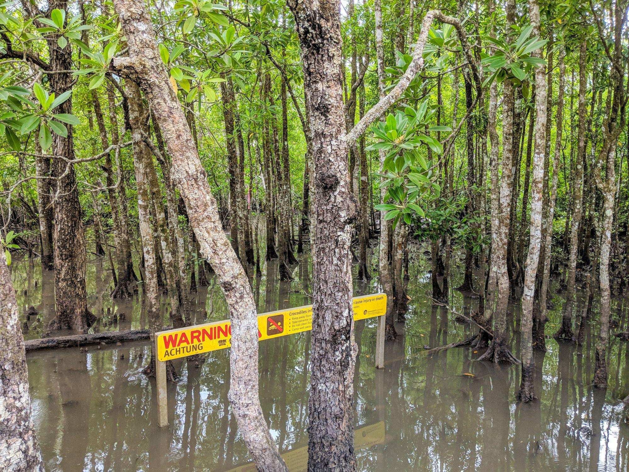 mangroves boat park