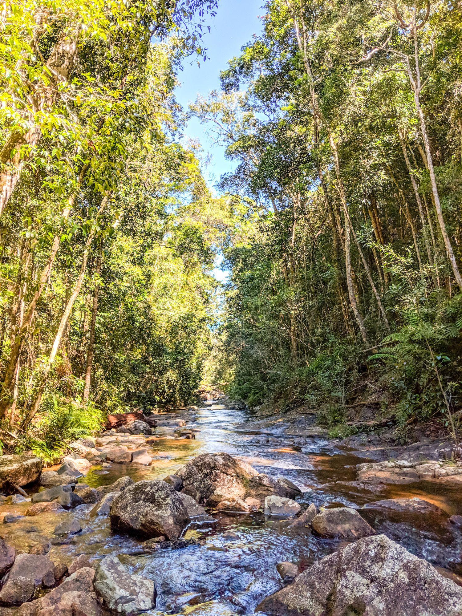 prospector hermit creek paluma
