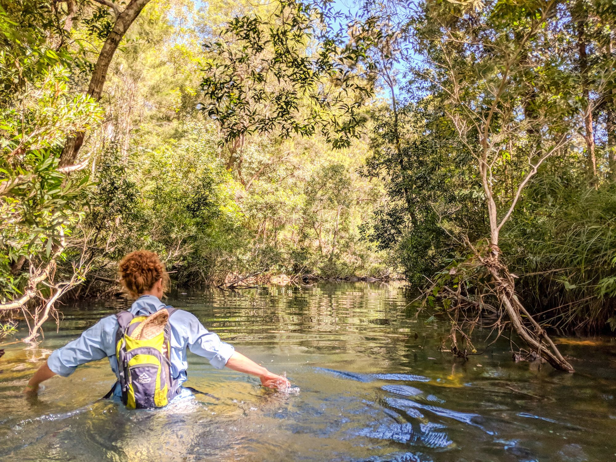 wading through water hermit creek paluma