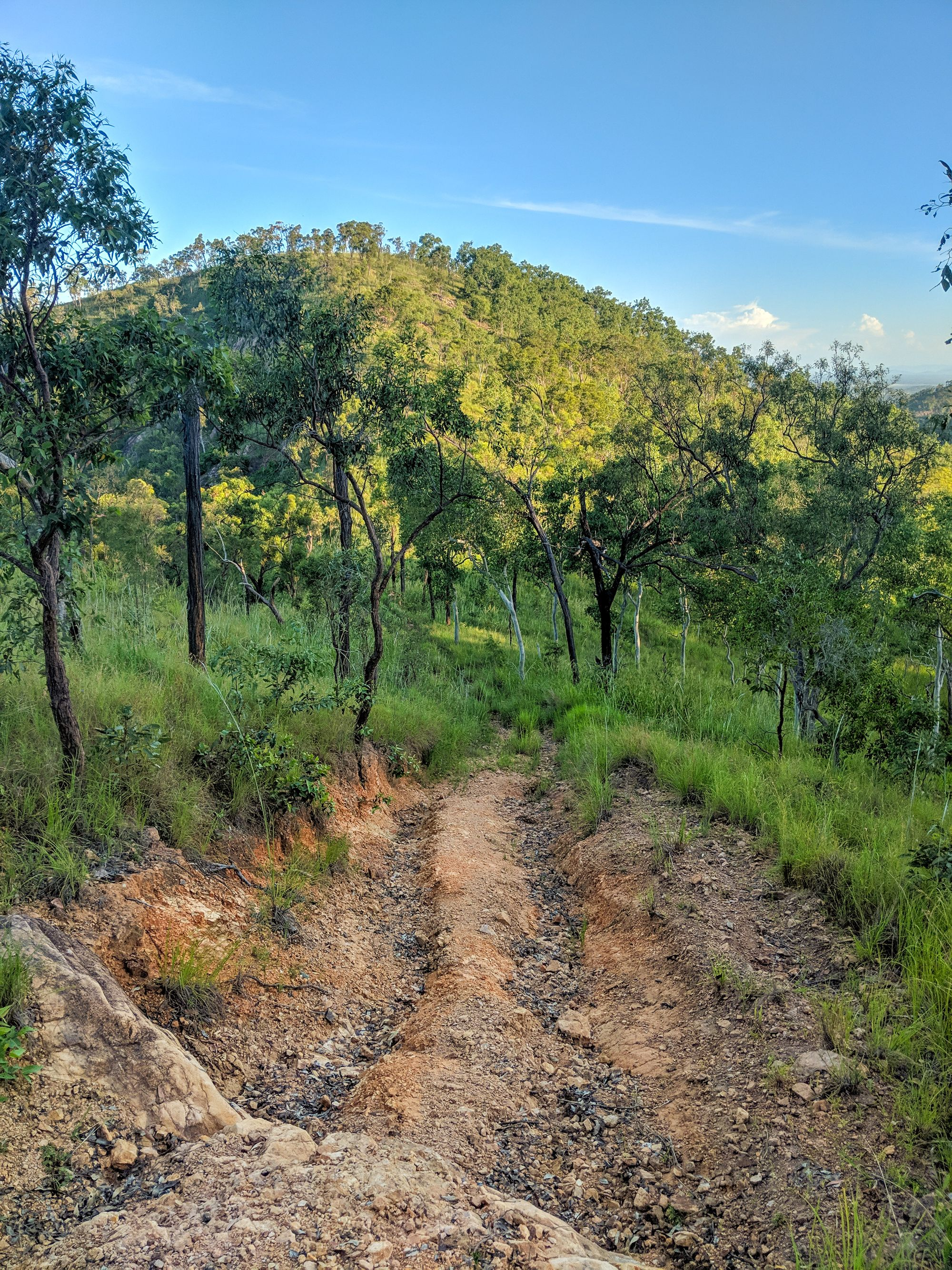 Wulguru Hills eroded tracks