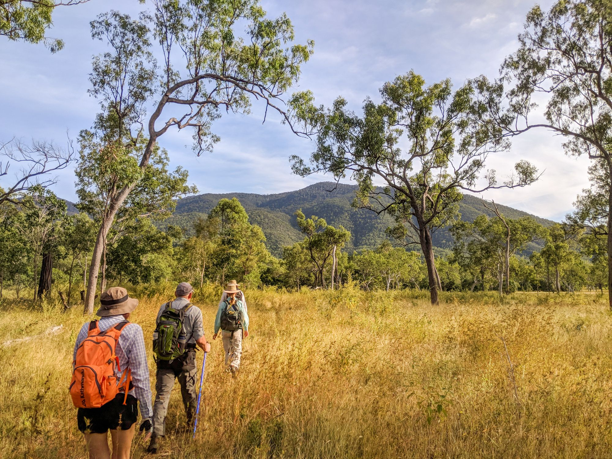 Townsville Bushwalking Club Walkers Creek