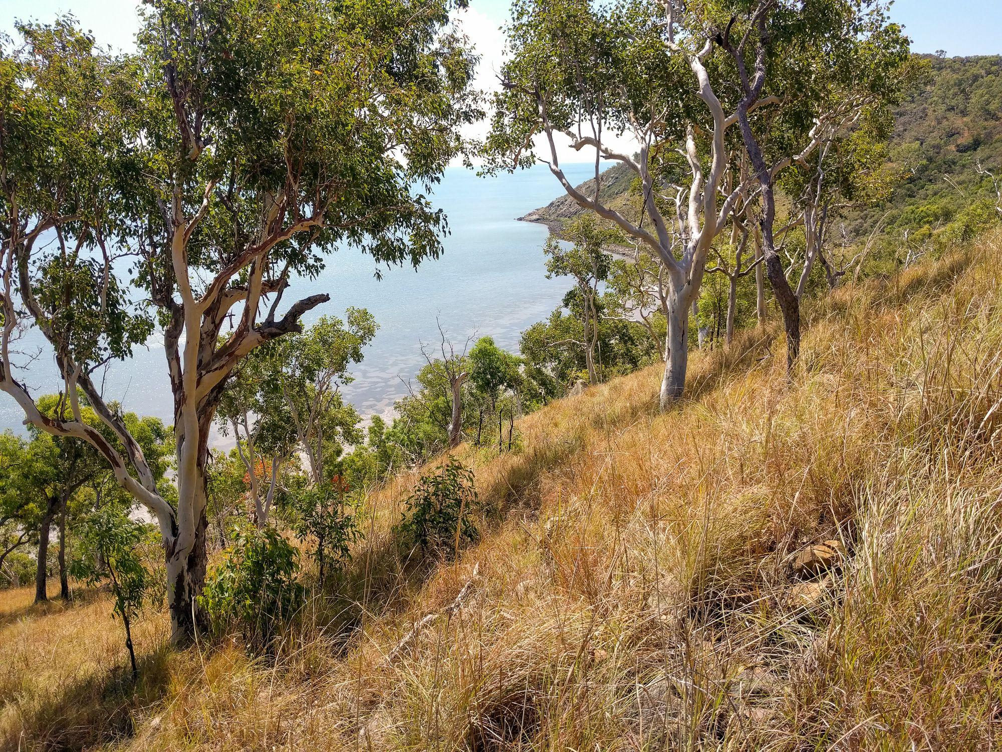 hillside cape cleveland