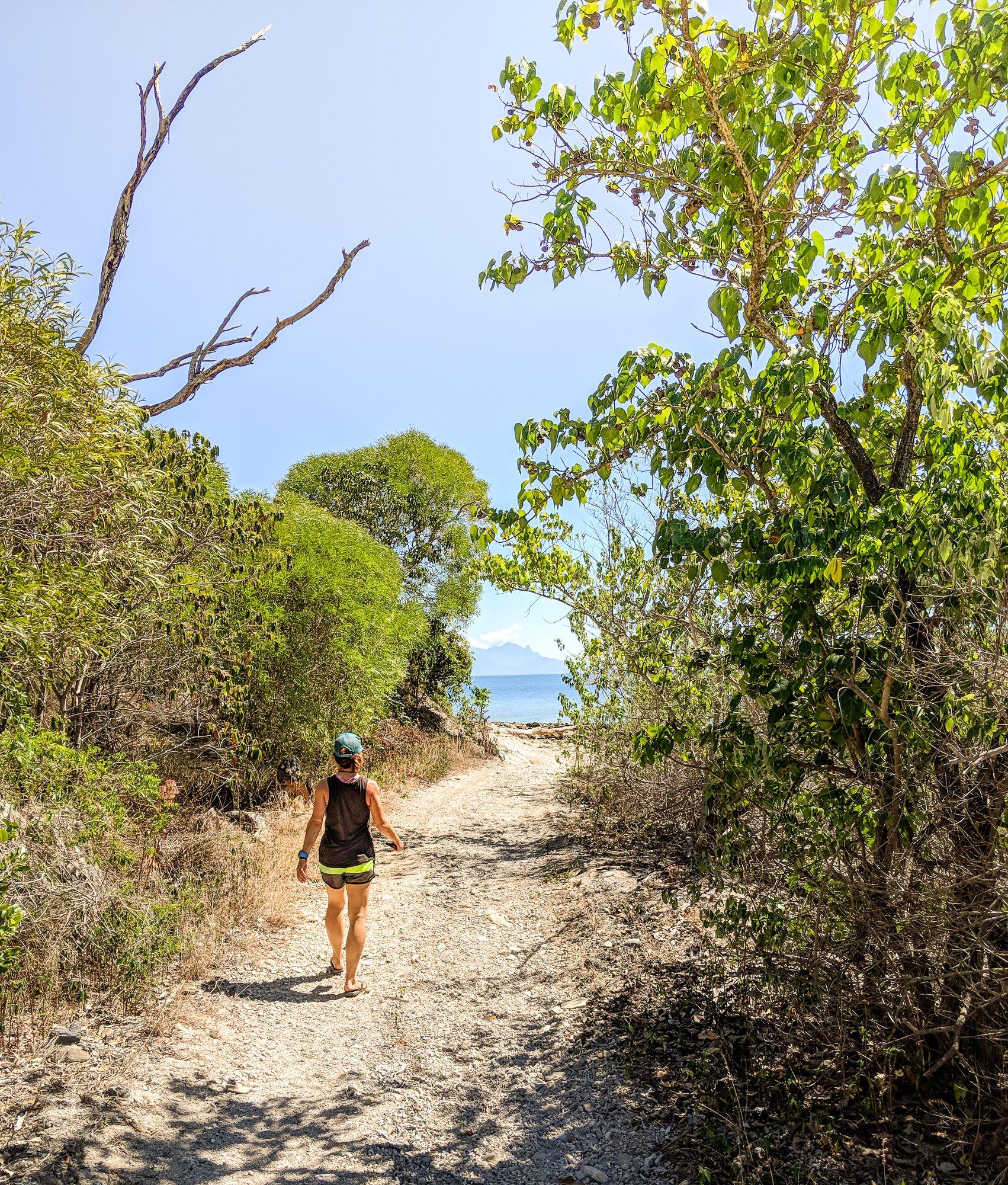 Jodie Rummer on Orpheus Island
