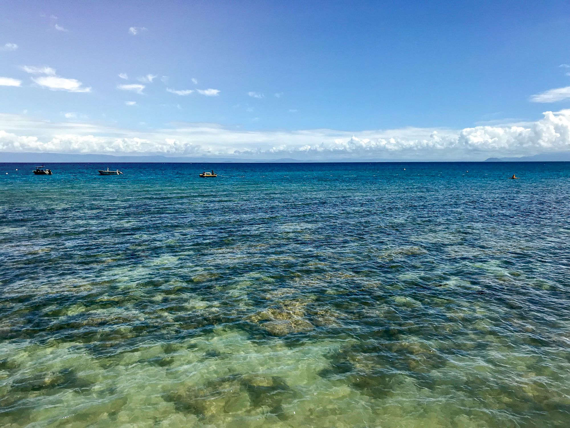 Orpheus Island reef