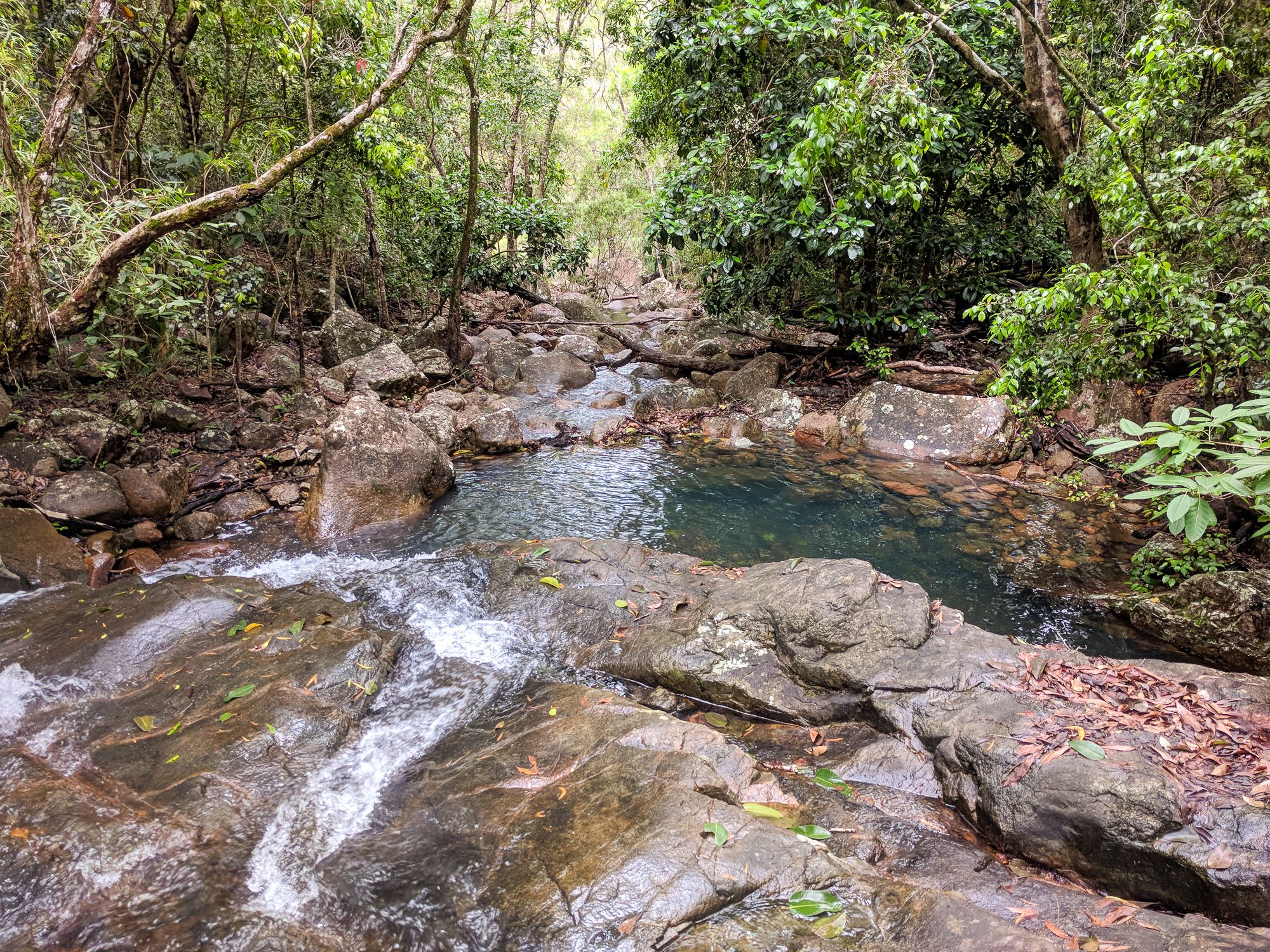 Leo's Creek, Paluma Range National Park
