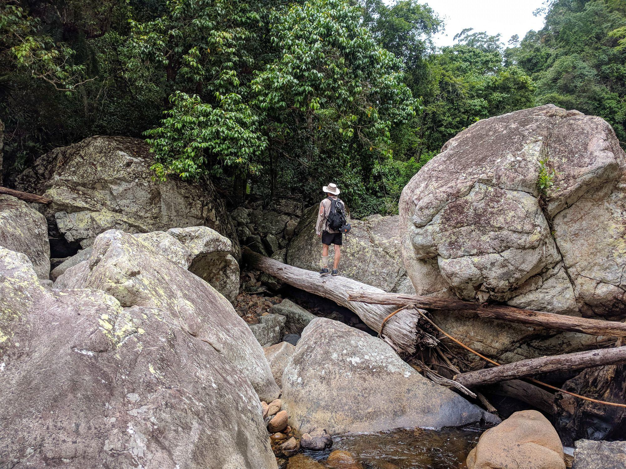 waterview creek log crossing