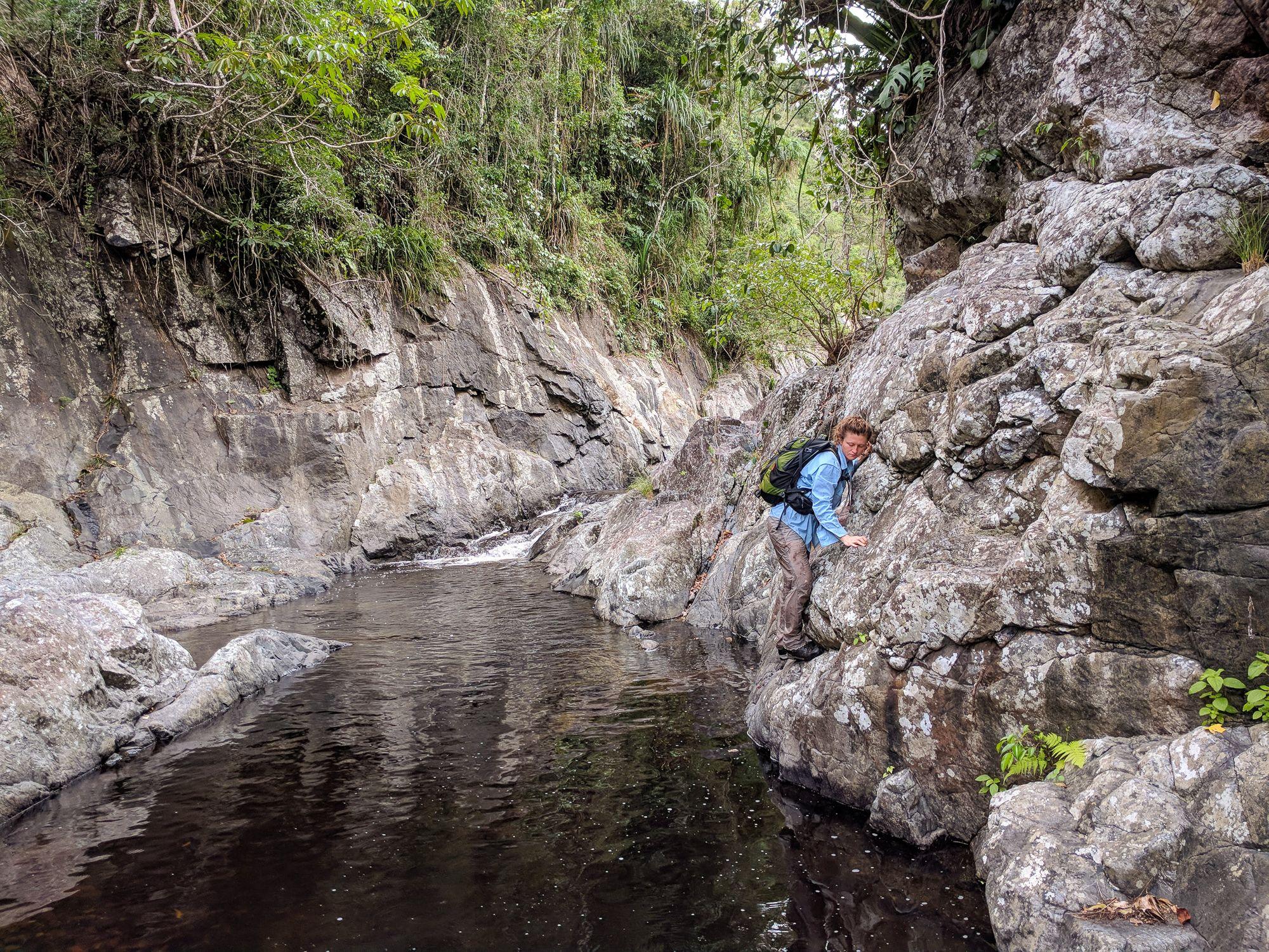 waterview creek mid 5