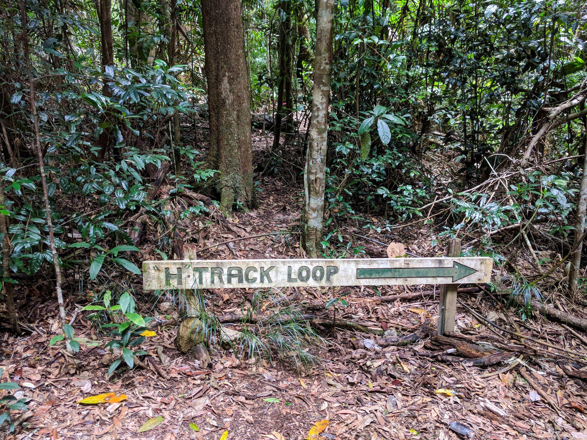 H Track Loop Sign