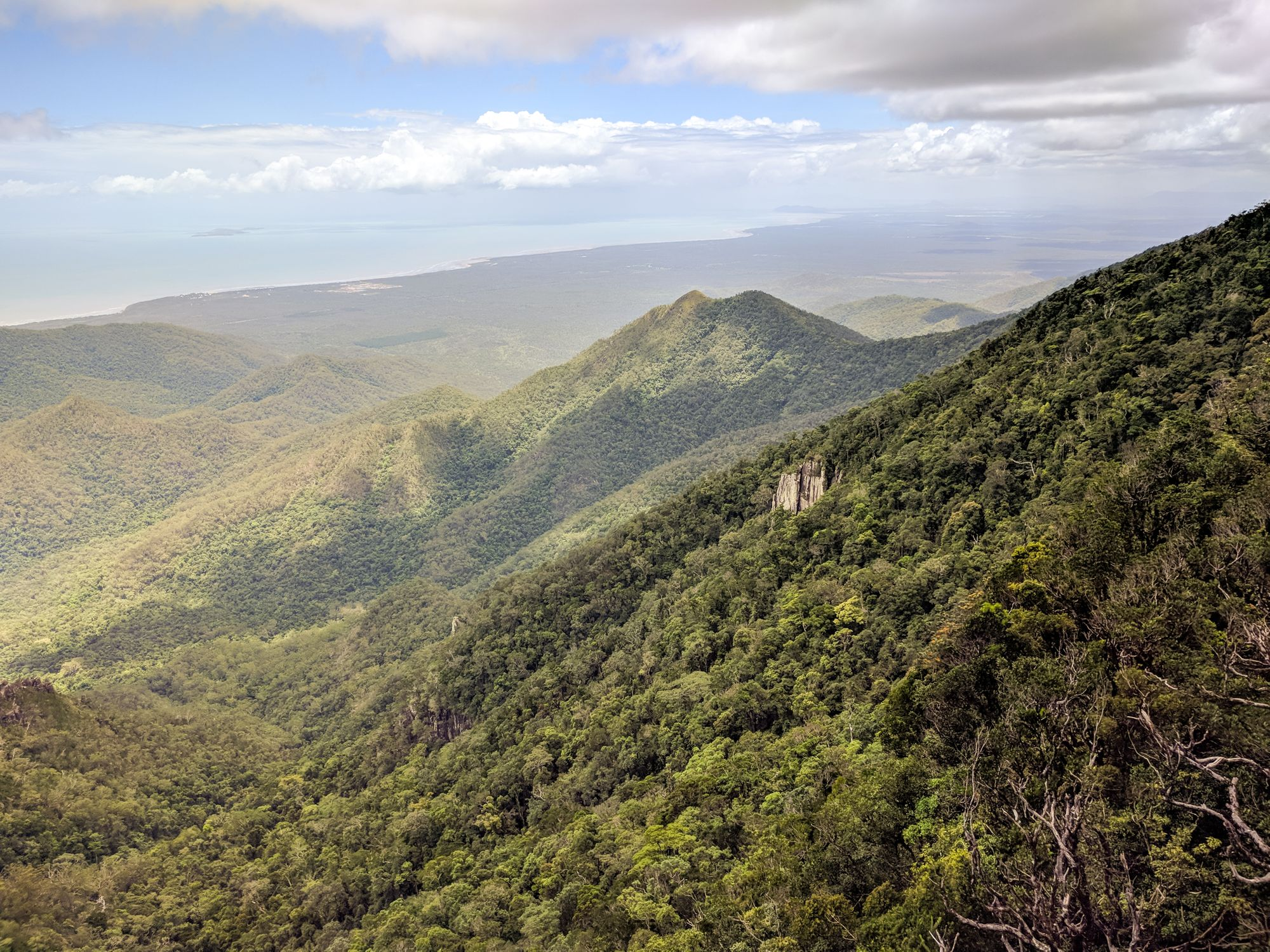 Mount Halifax, Paluma Range National Park