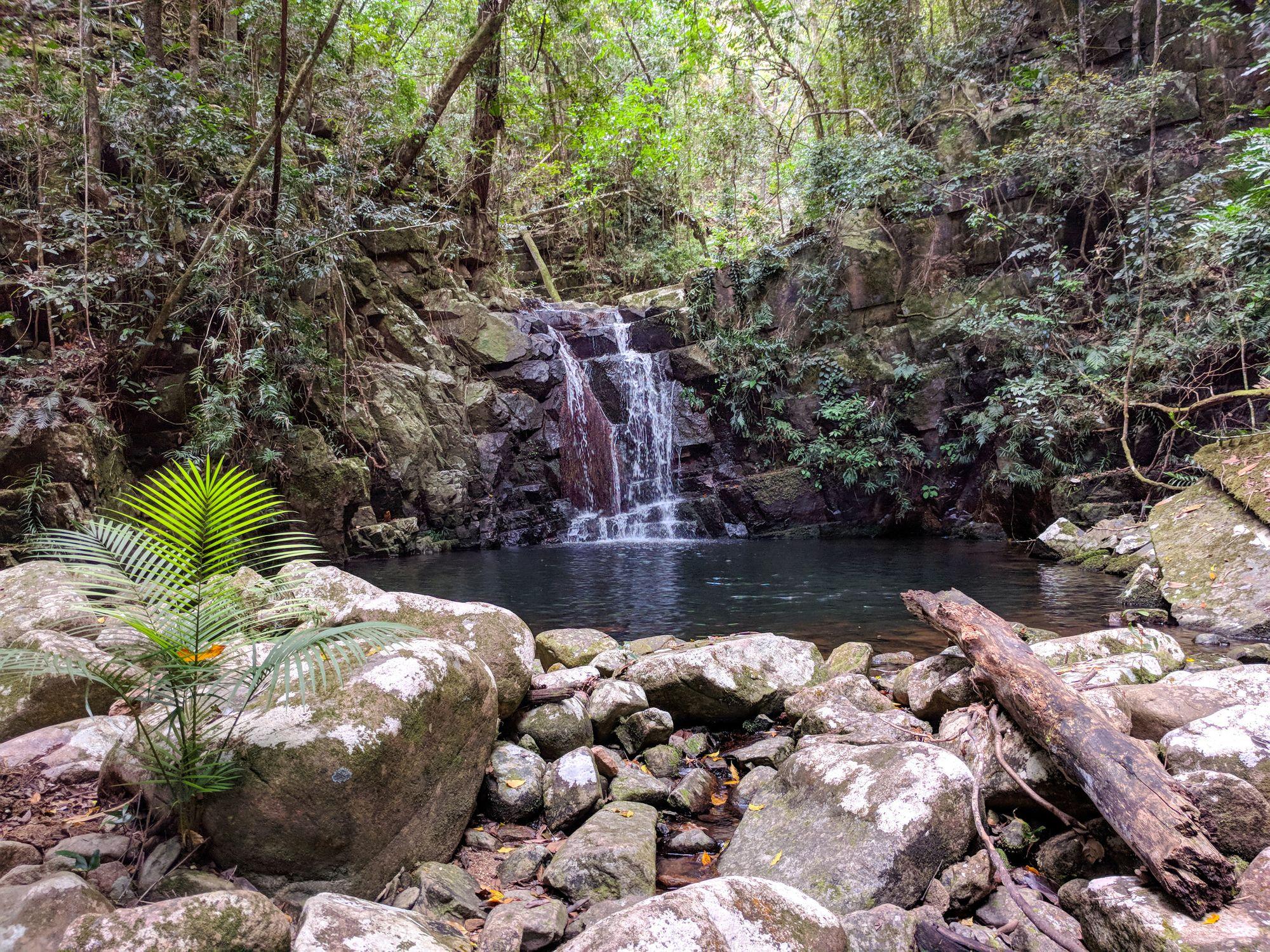 triple falls bluegum creek paluma