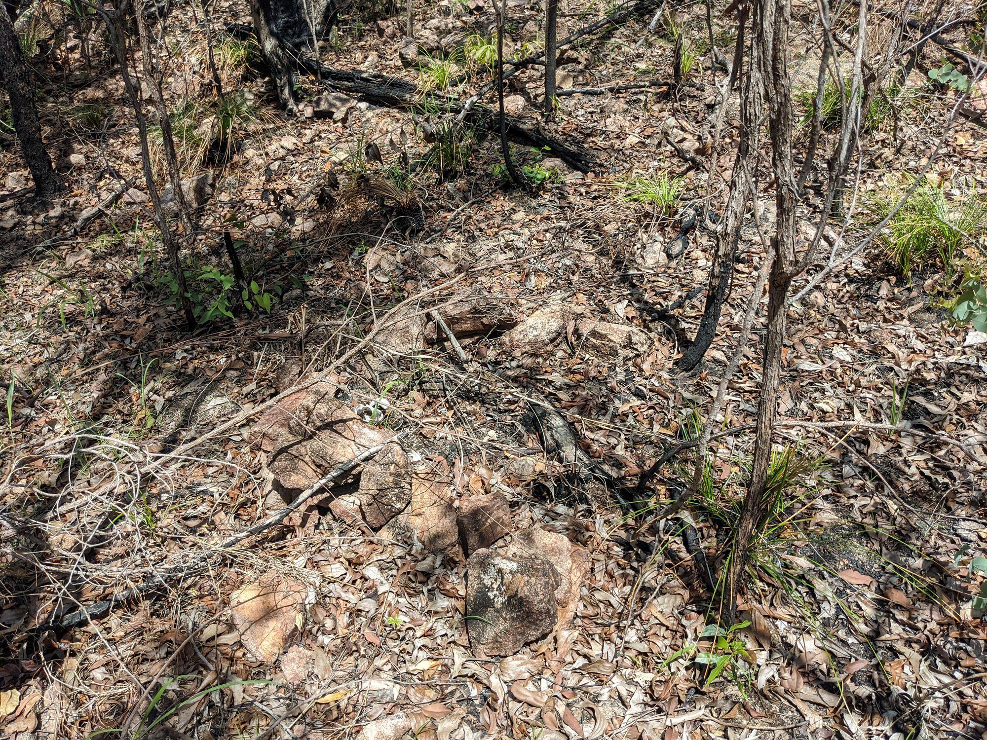 paluma telegraph line fire pit