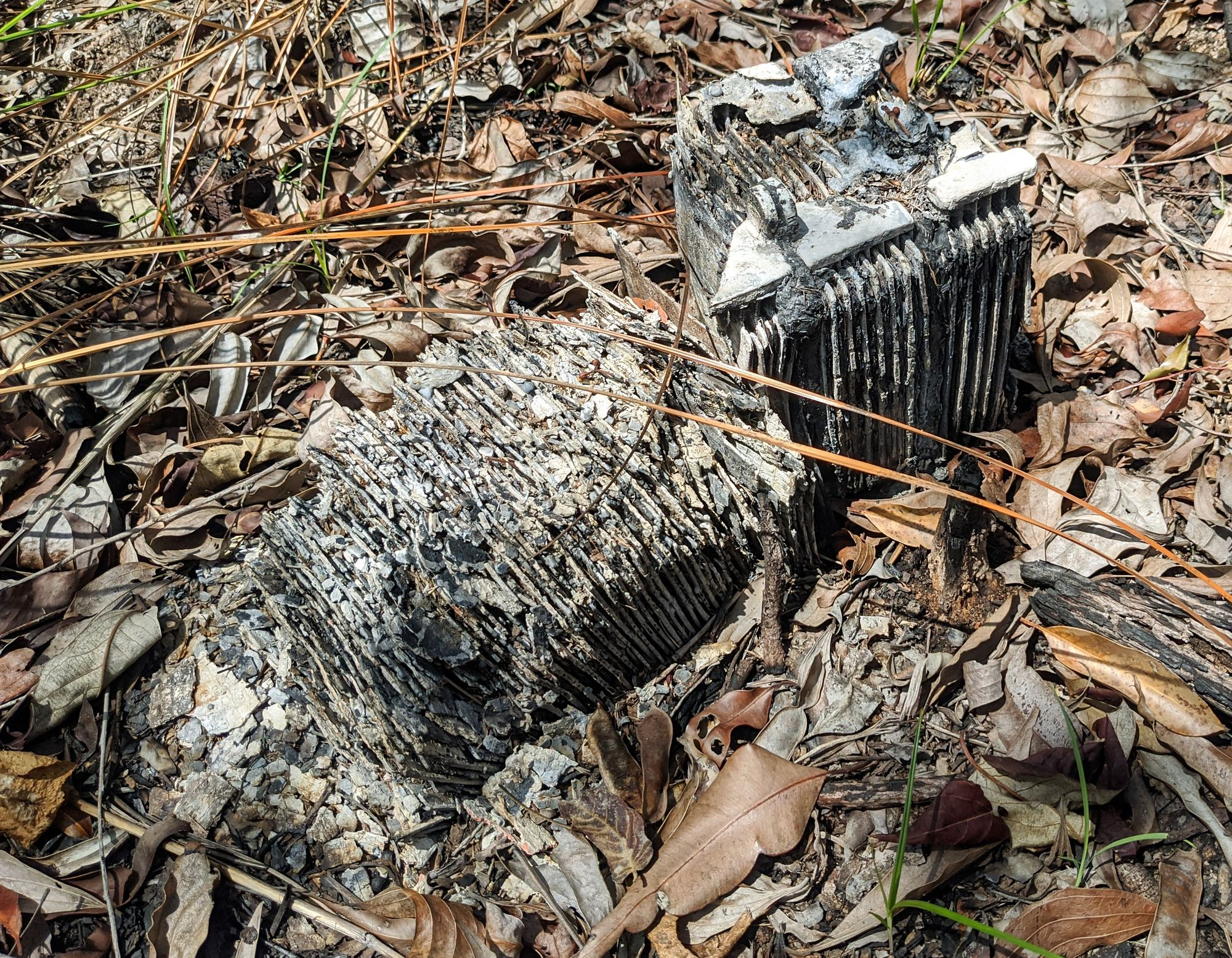 paluma work camp artefacts