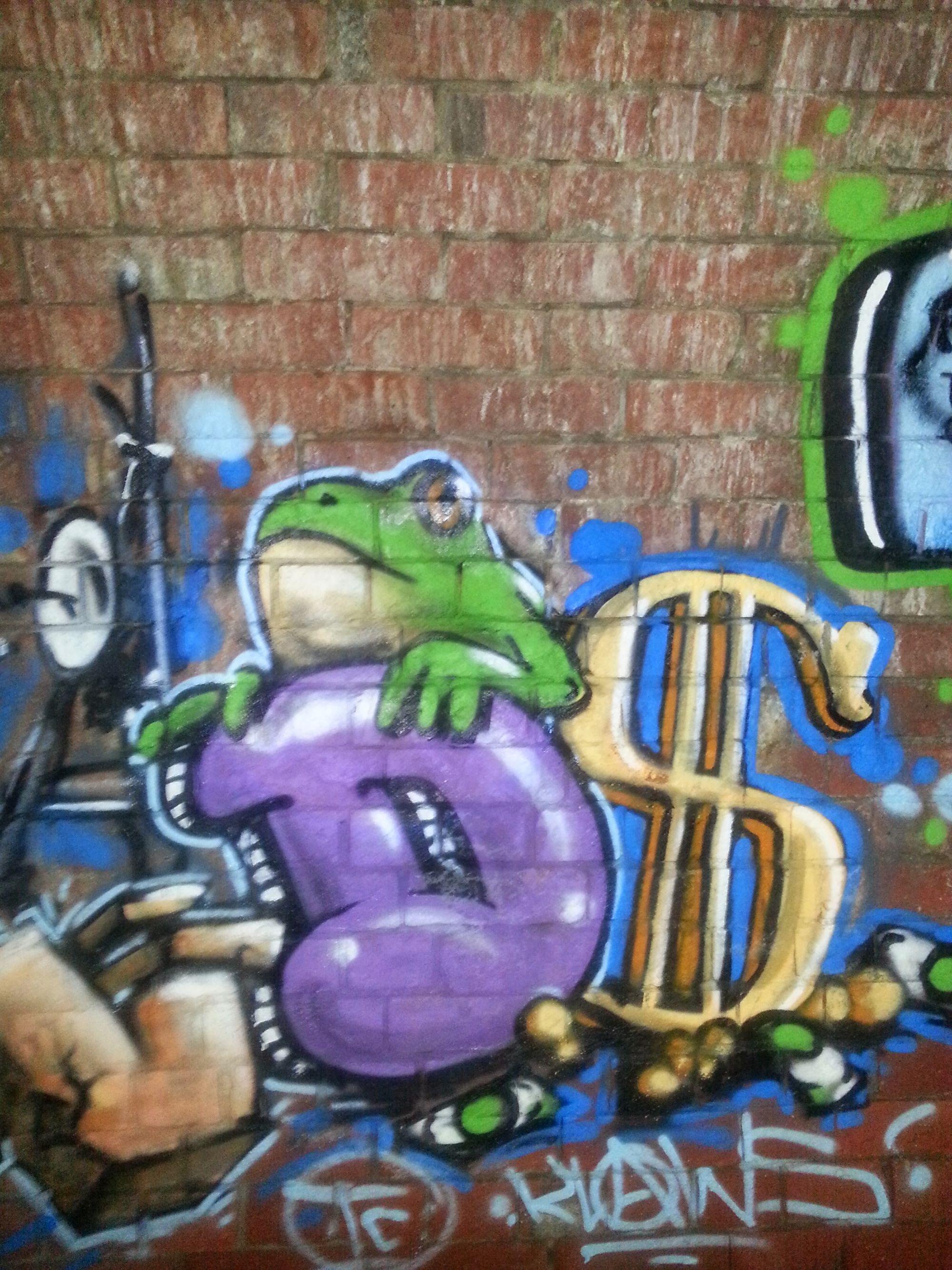 townsville stormwater drain frog graffiti