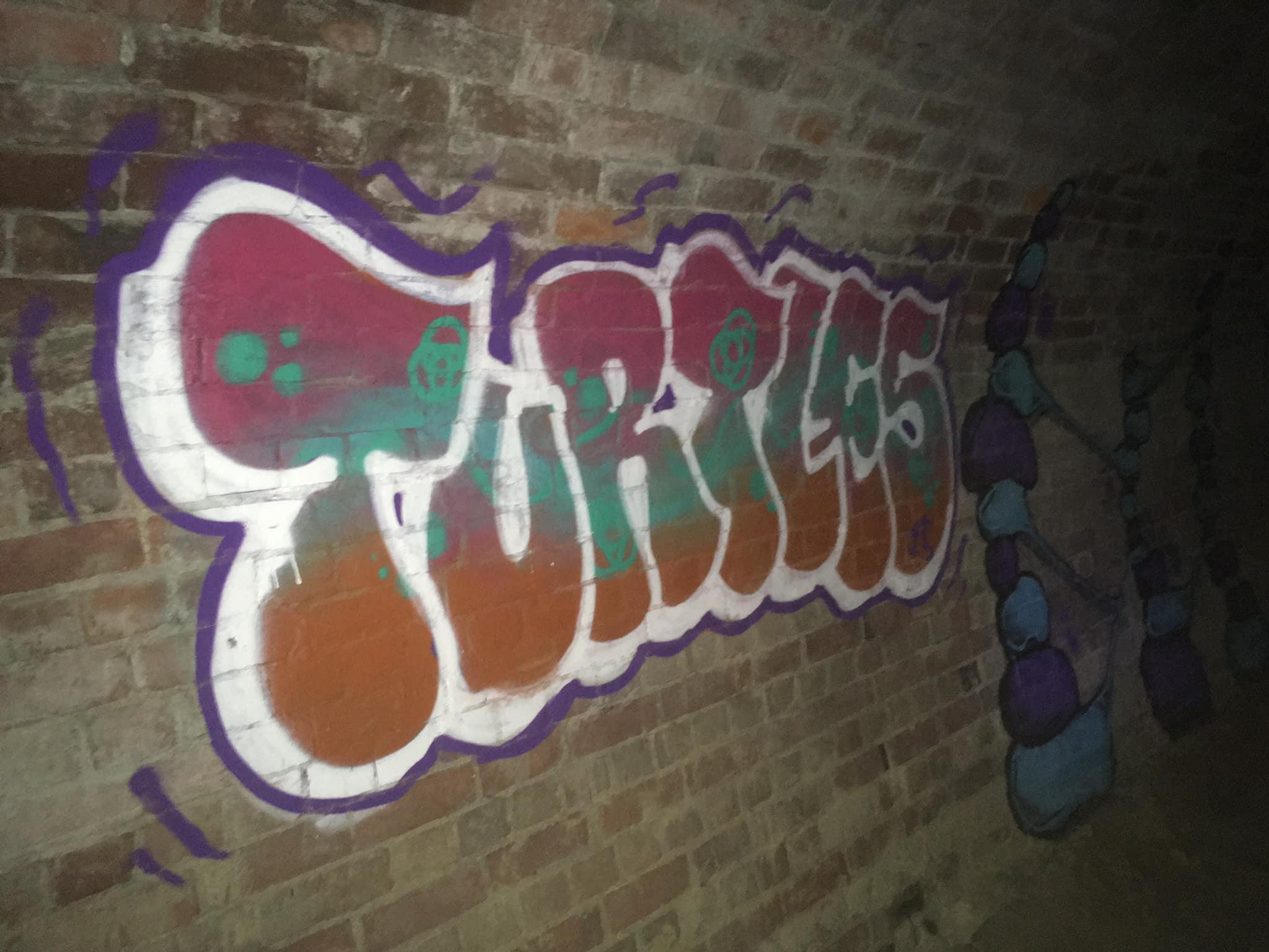 turtles graffiti art drain