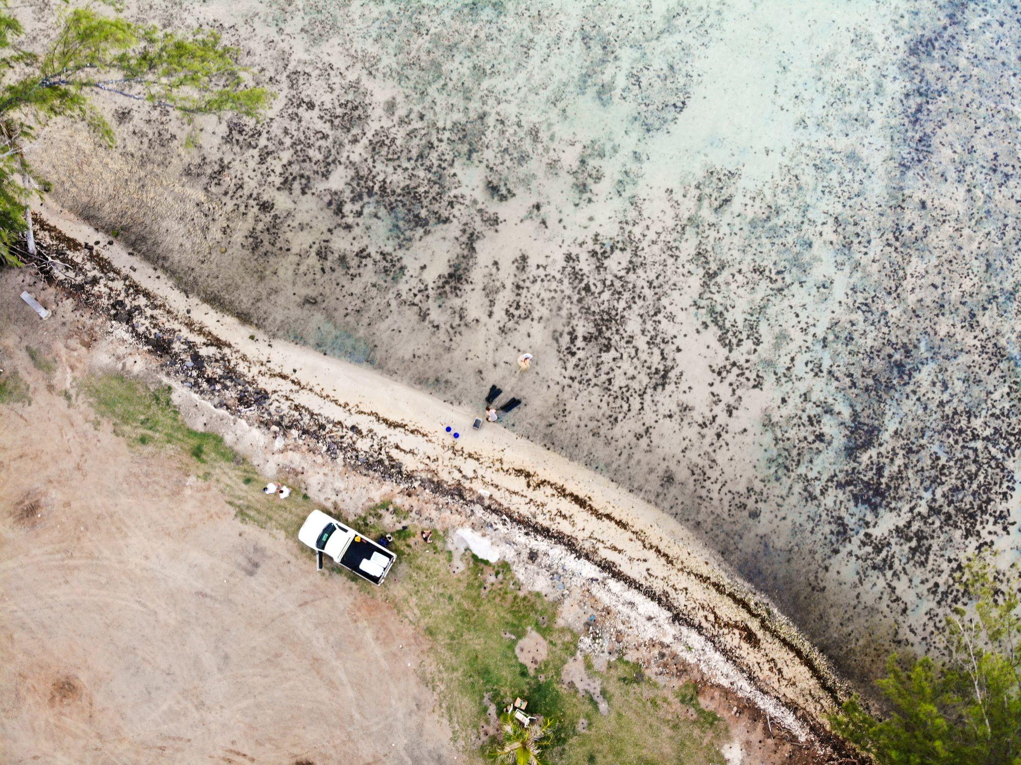 beach ocean moorea french polynesia