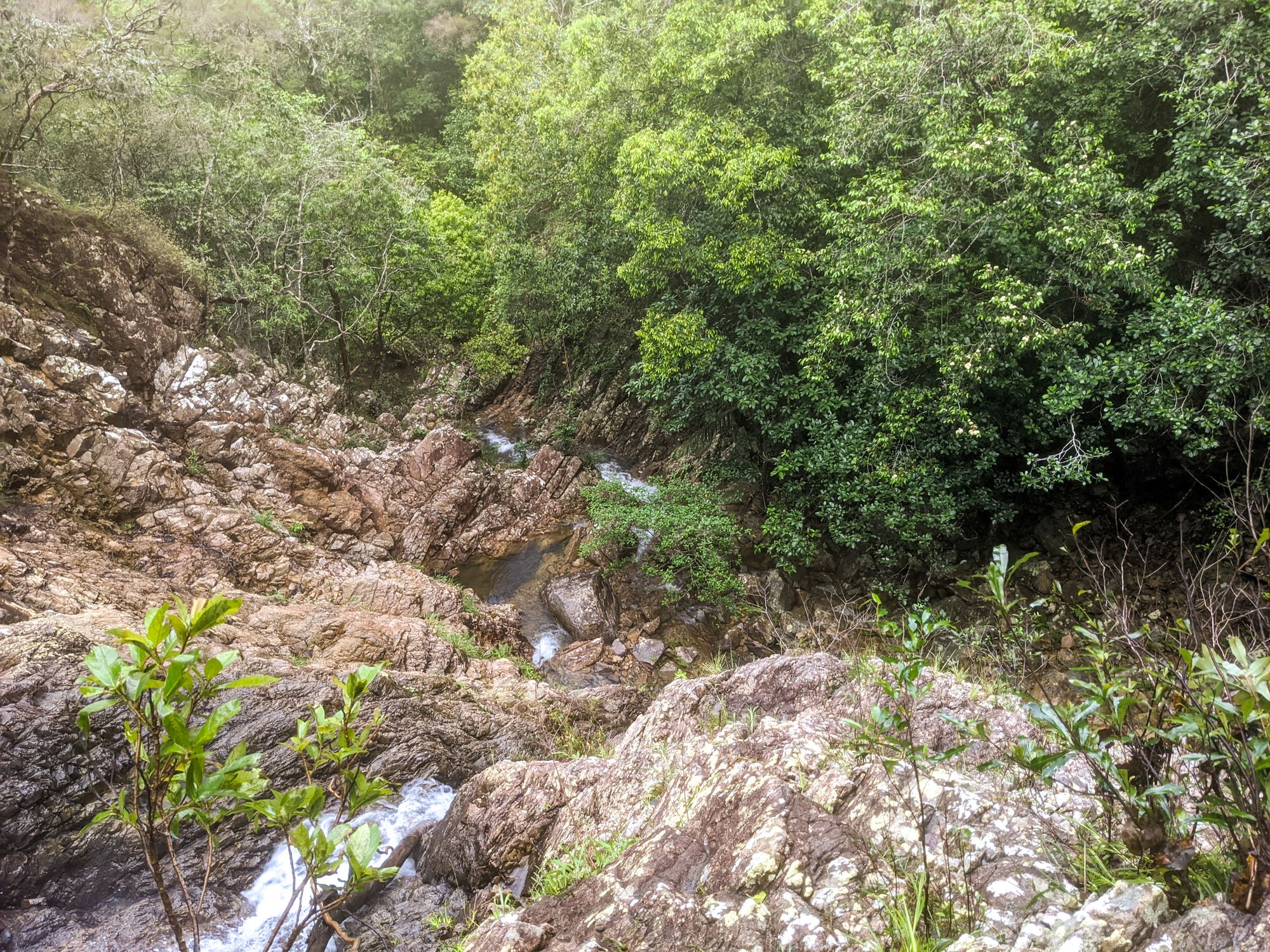 drop mobile creek 1