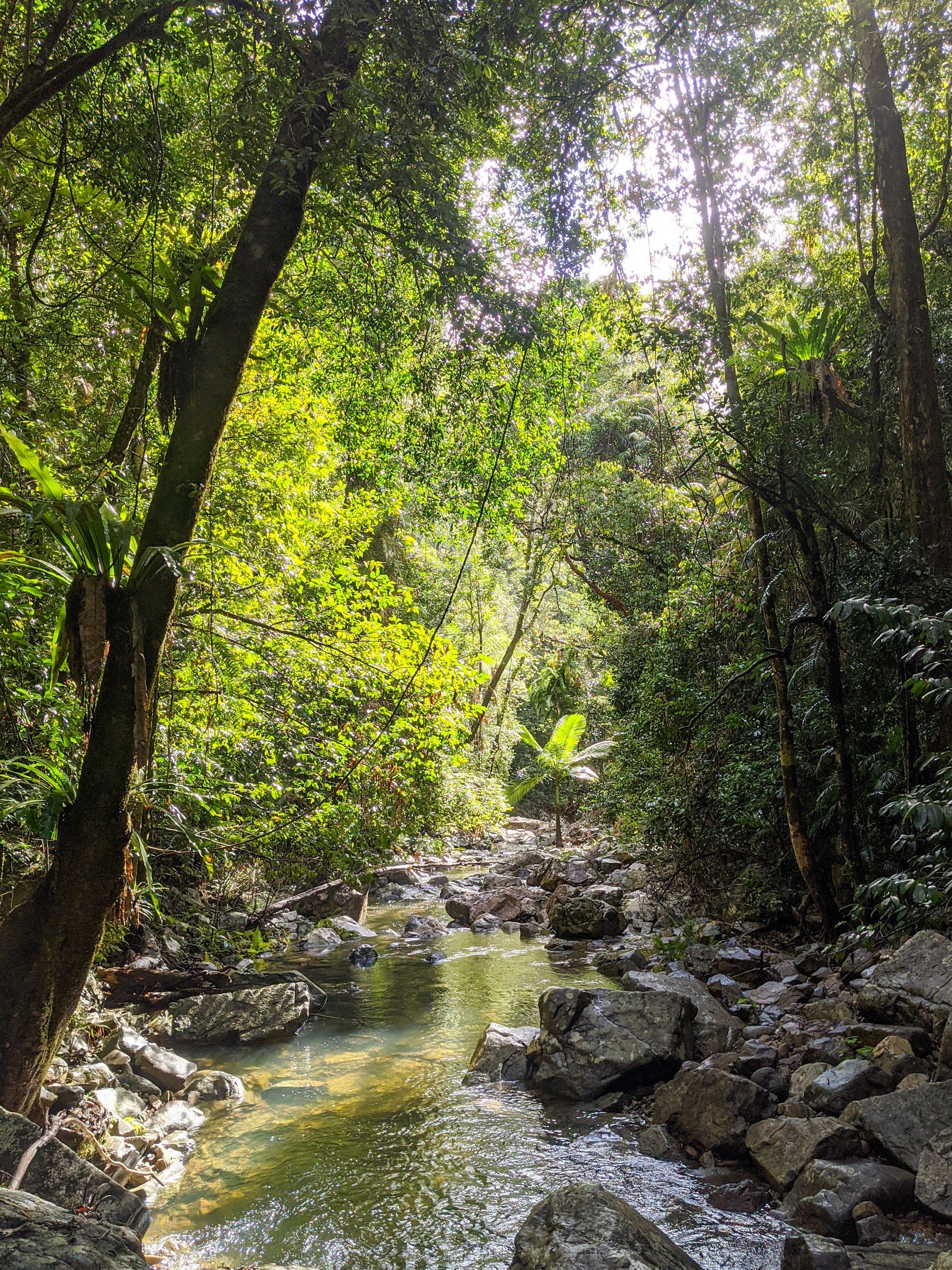 palm mobile creek