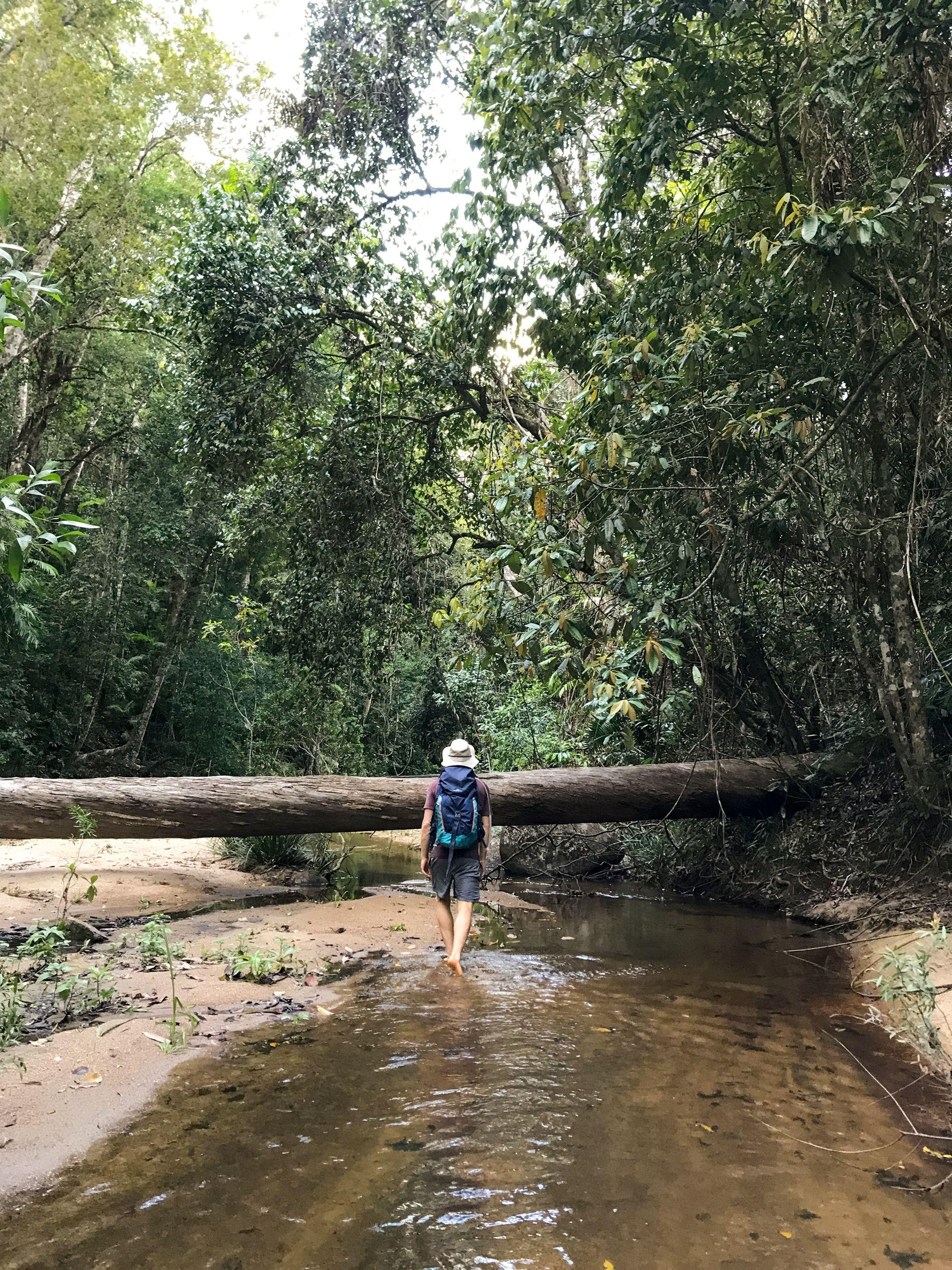raspberry creek luen warneke
