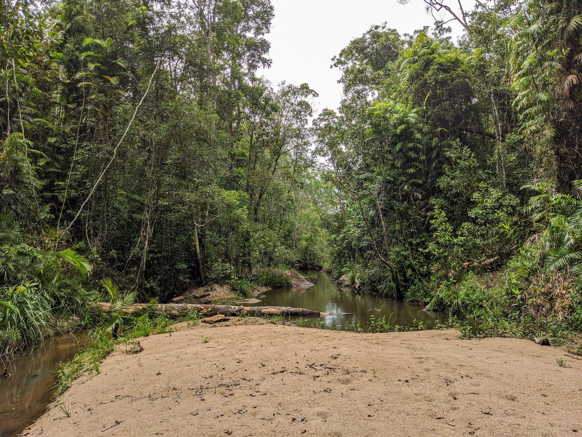 raspberry creek sandy creekbed