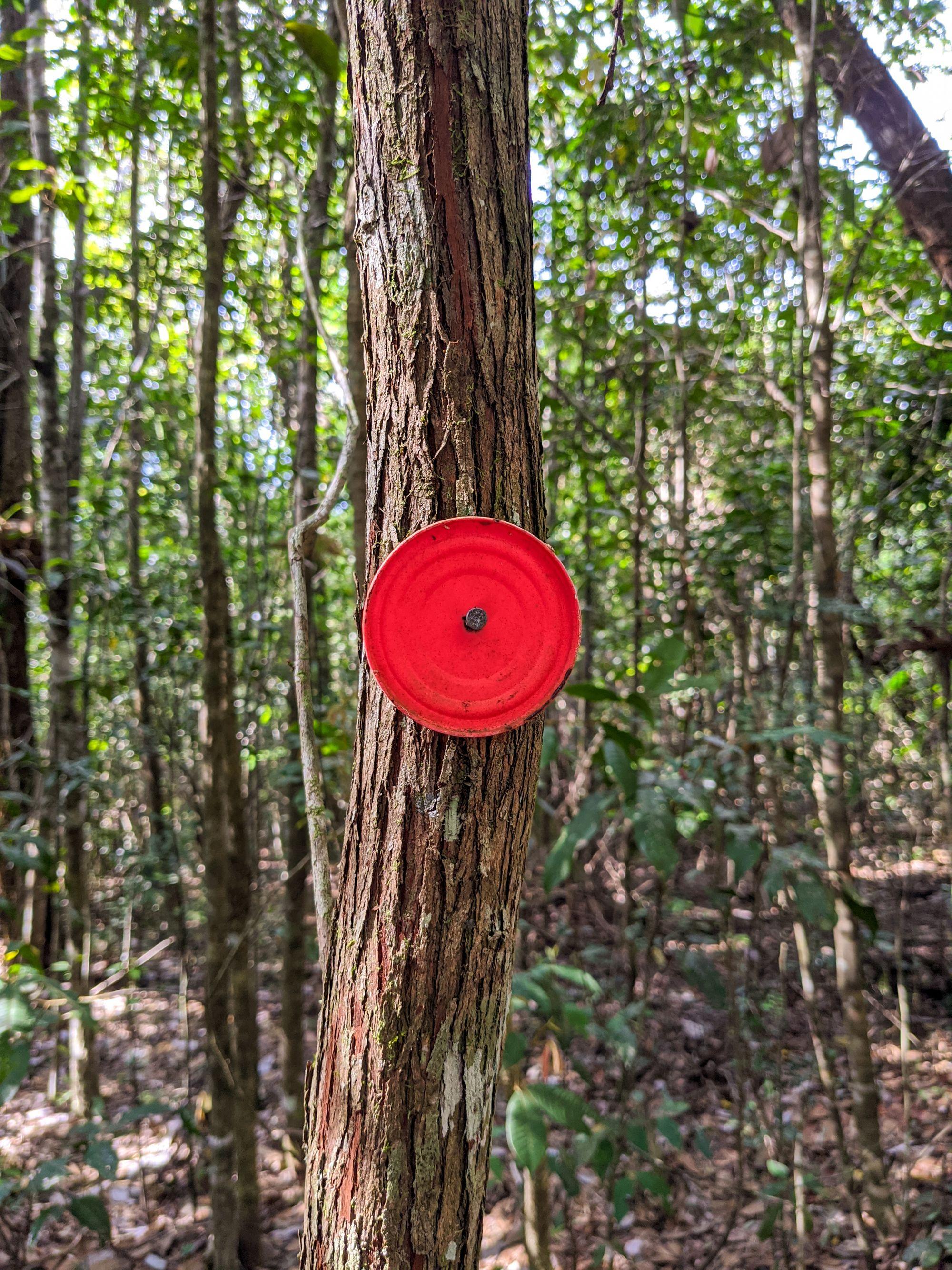 raspberry falls track marker