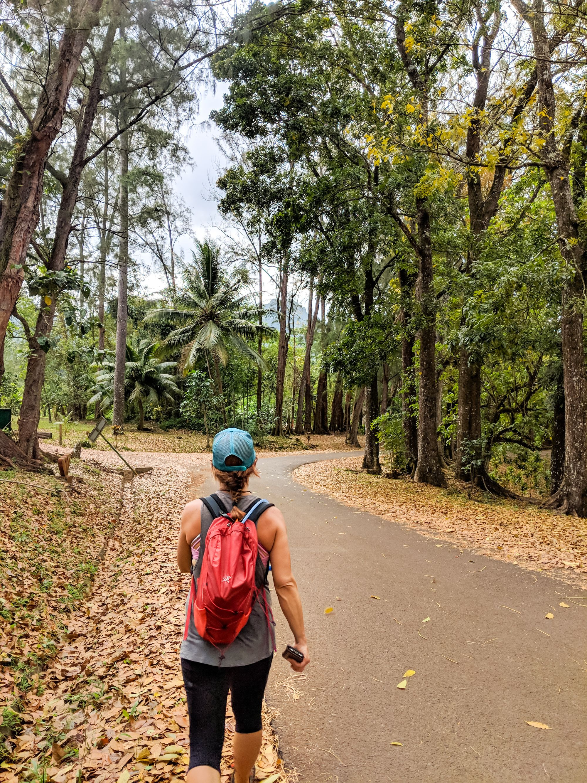 road hike moorea french polynesia