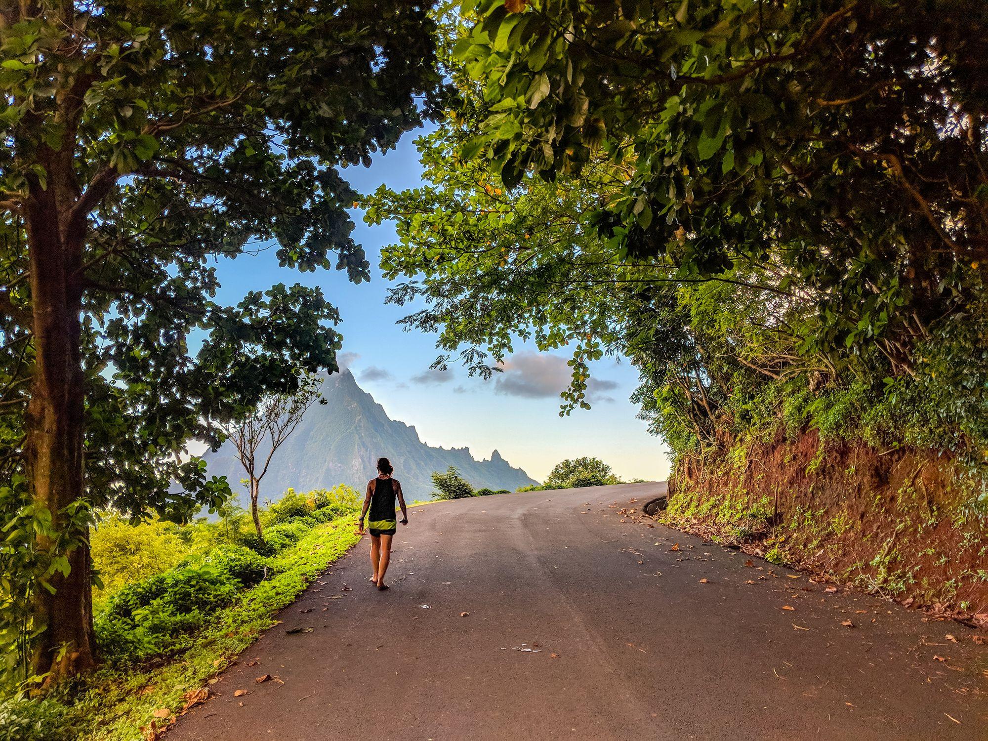 road moorea french polynesia