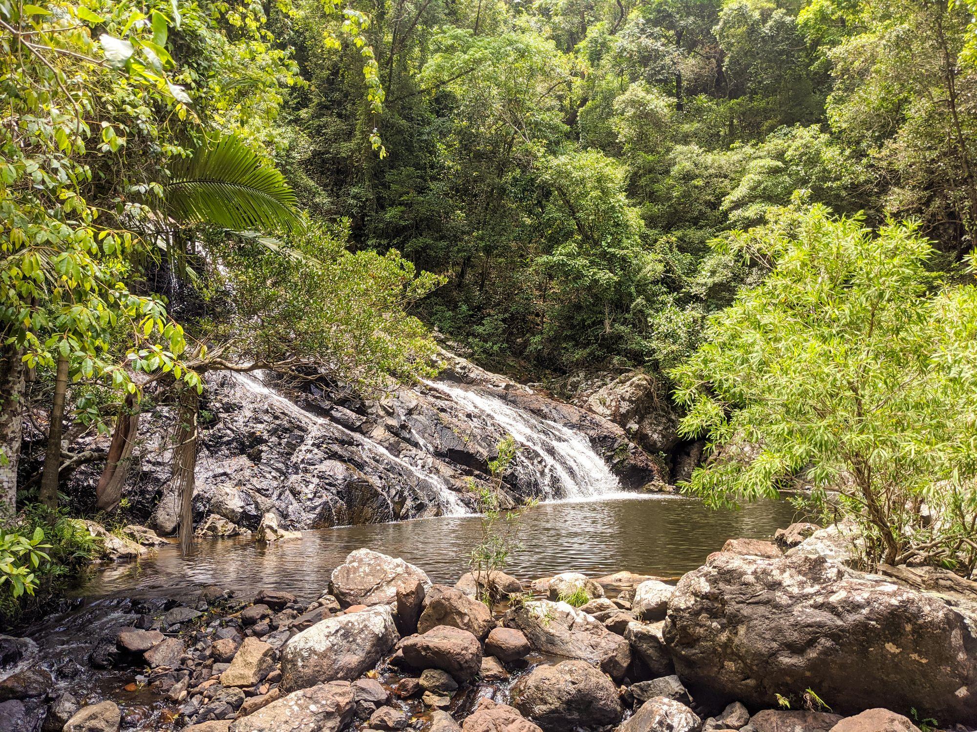 Tinkle Creek