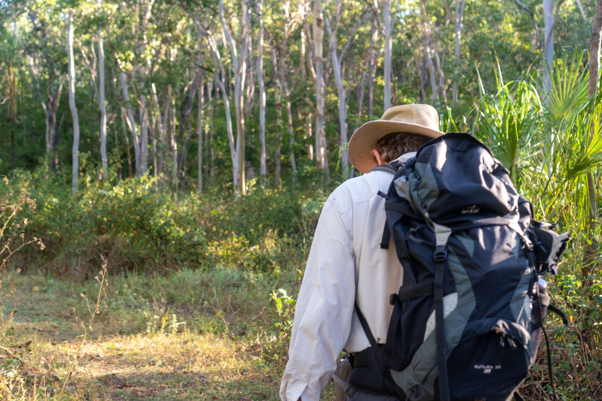 plam creek hike