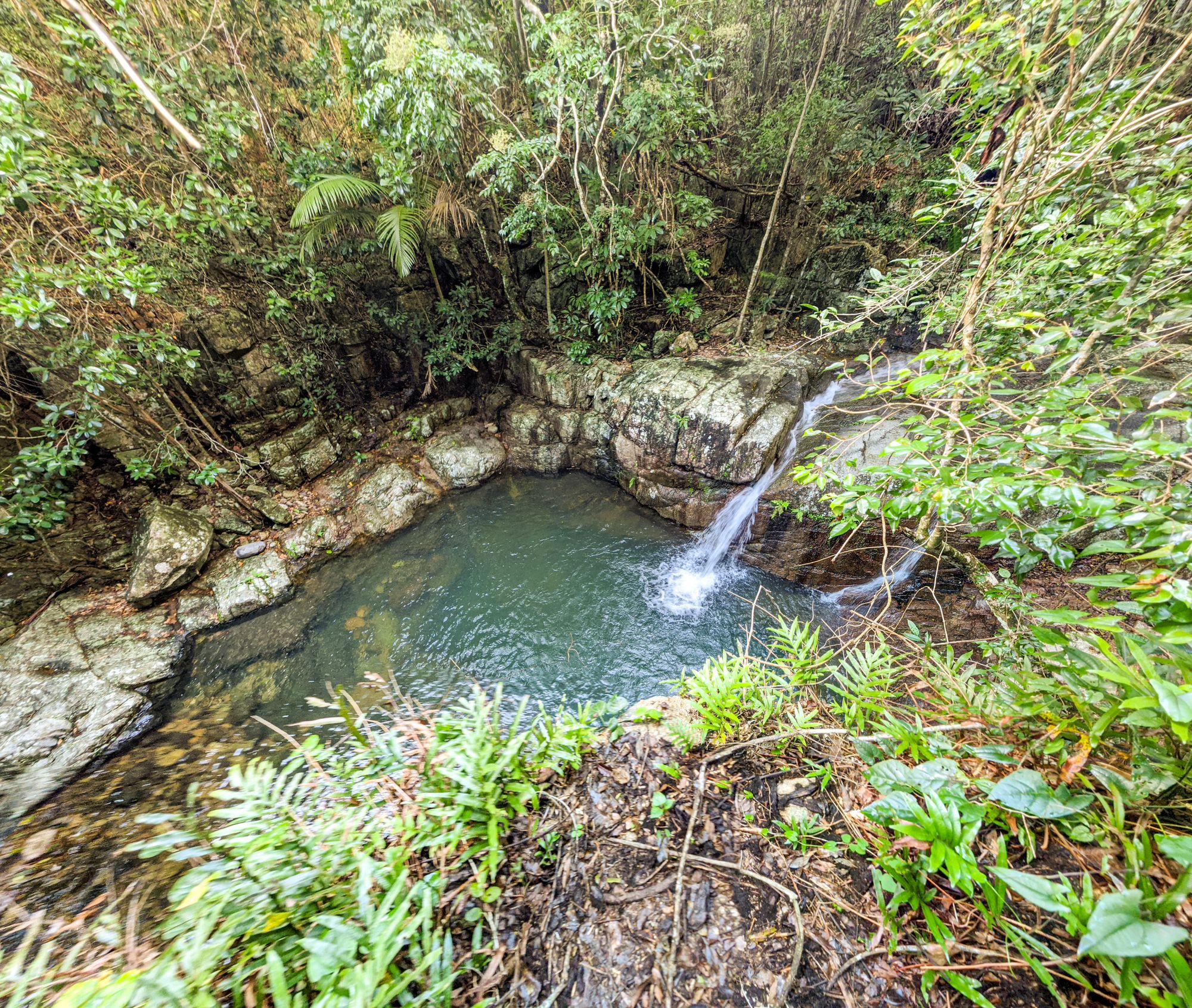 rope falls halifax cliff jump