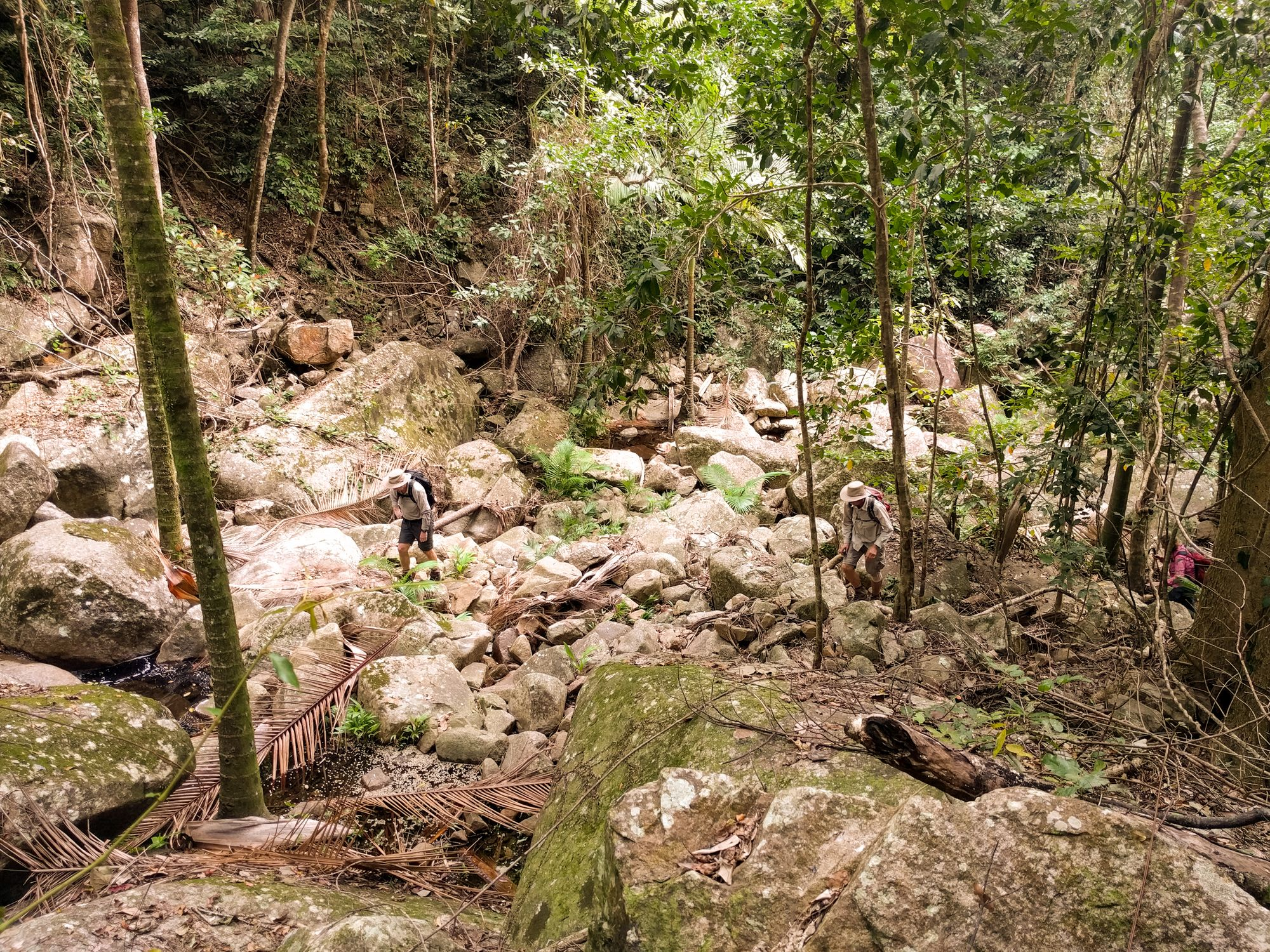 st margaret creek townsville bushwalking club