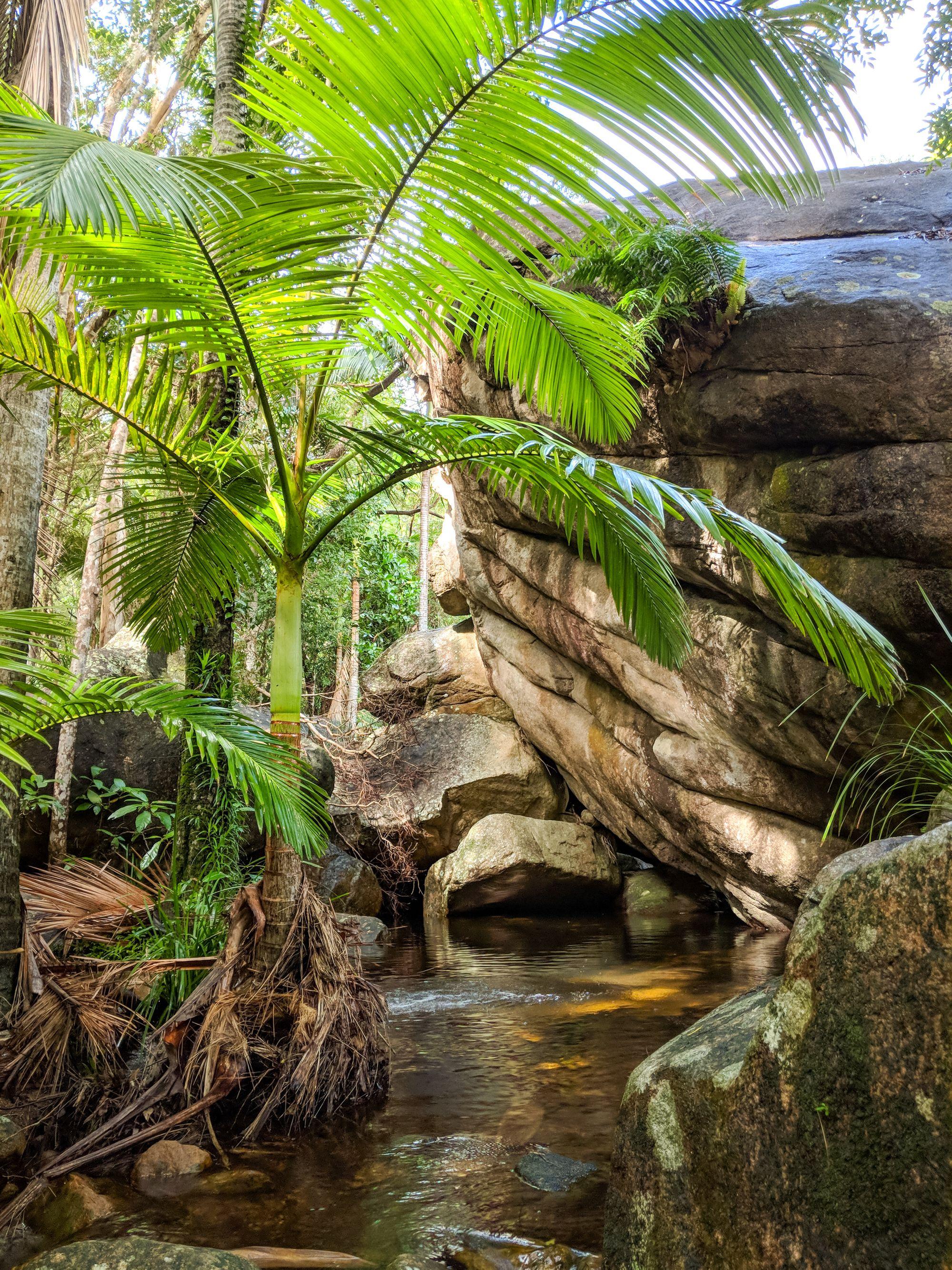 the cascades hike