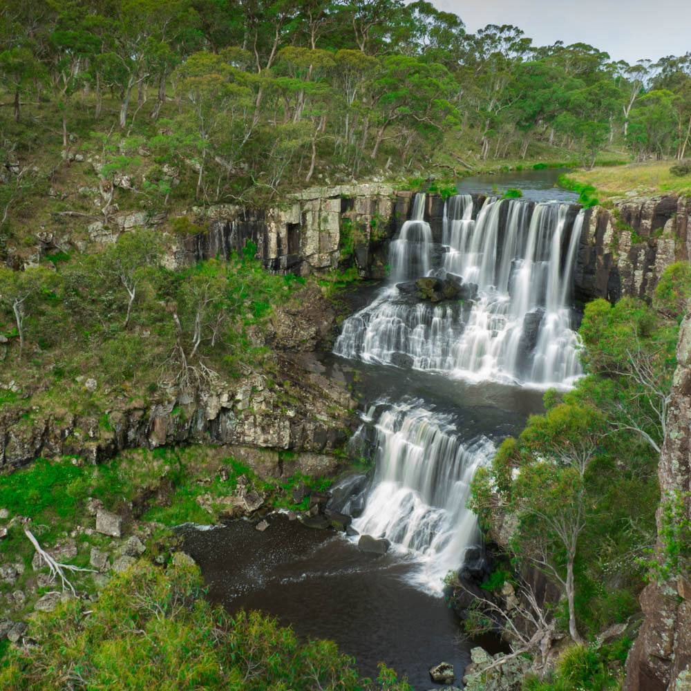 Ebor Falls Waterfalls way New South Wales