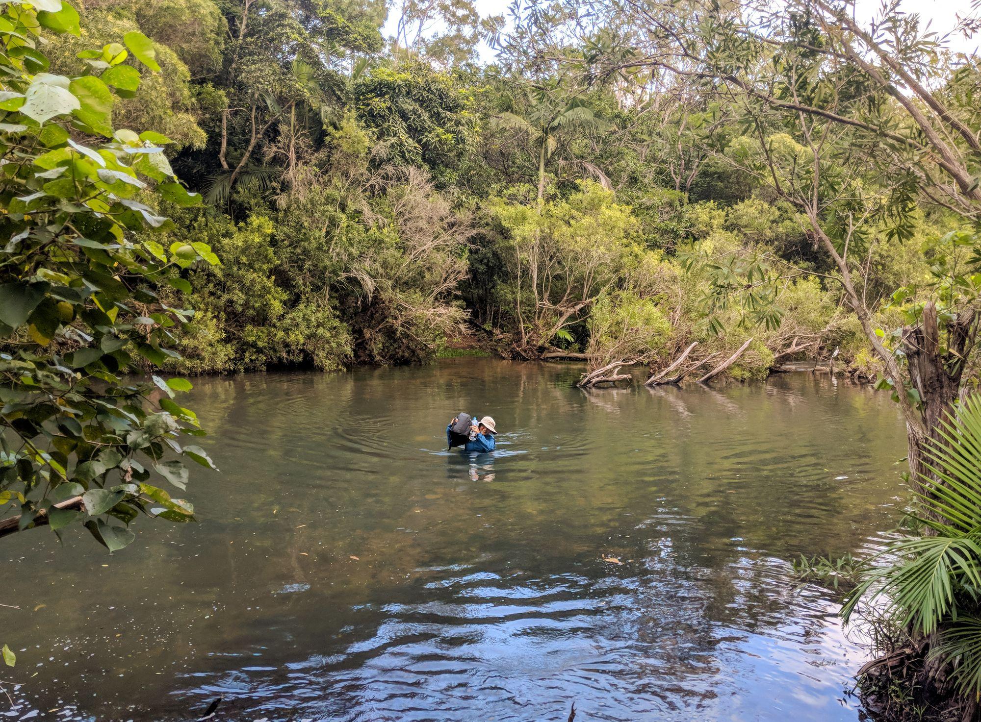 alligator creek falls track creek crossing