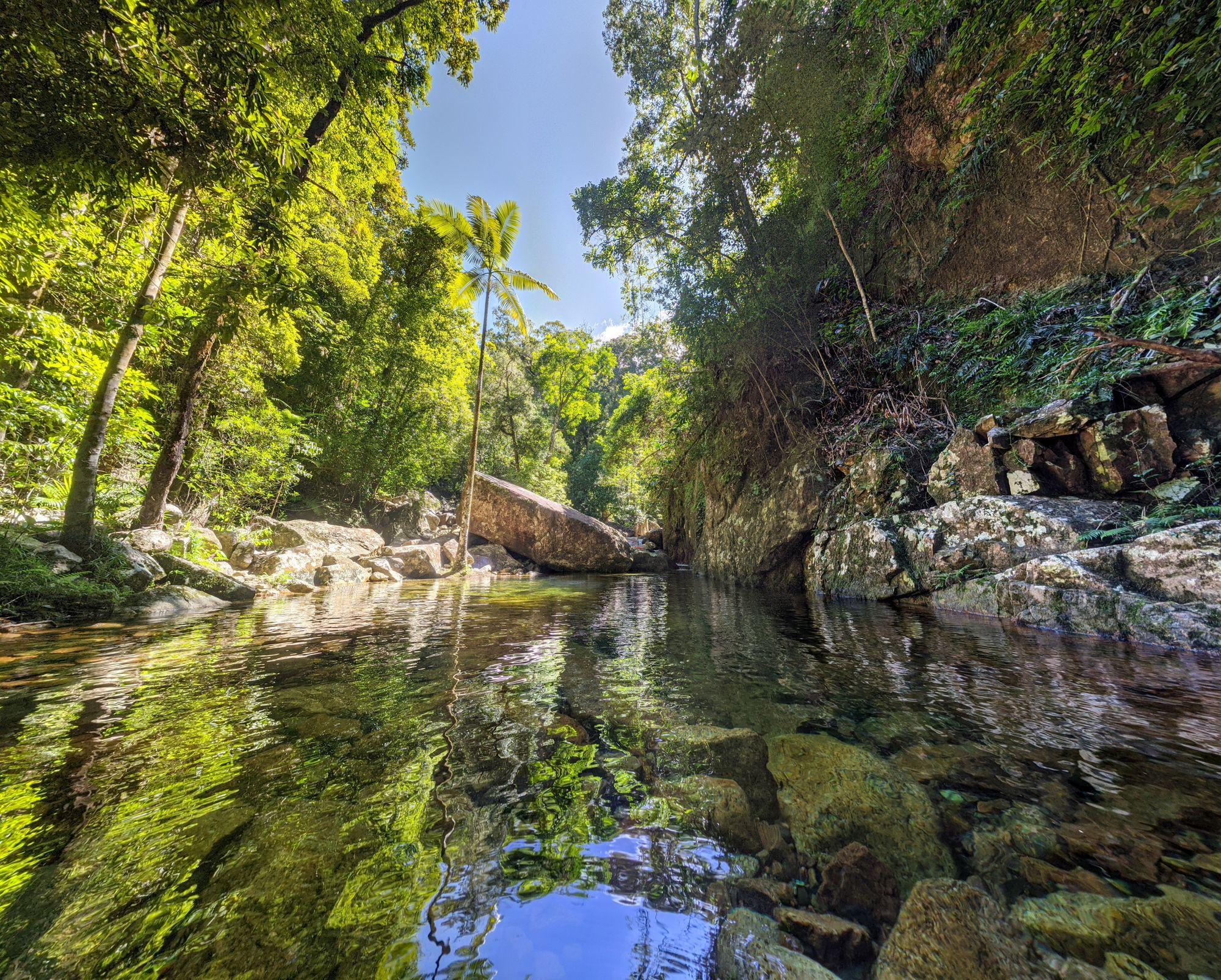 bullocky toms creek major fork