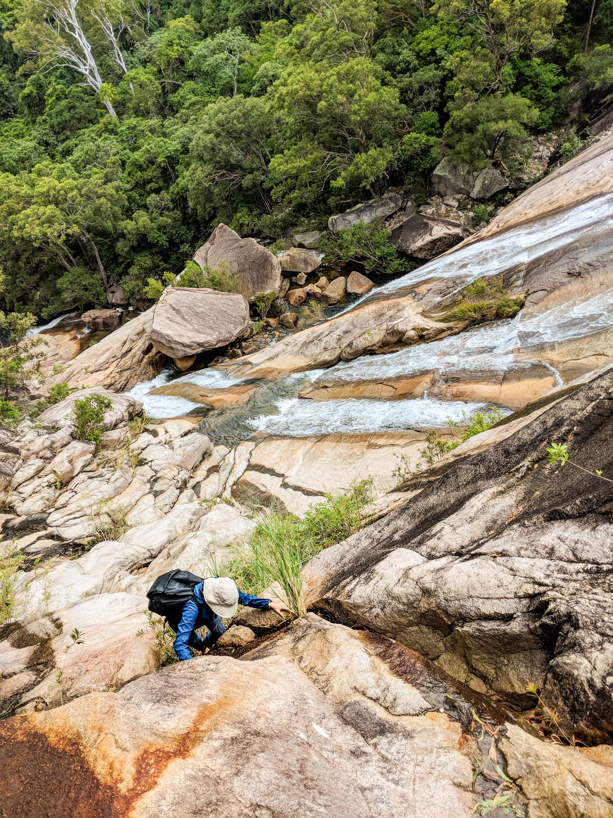 climbing alligator falls benafsha yosufi