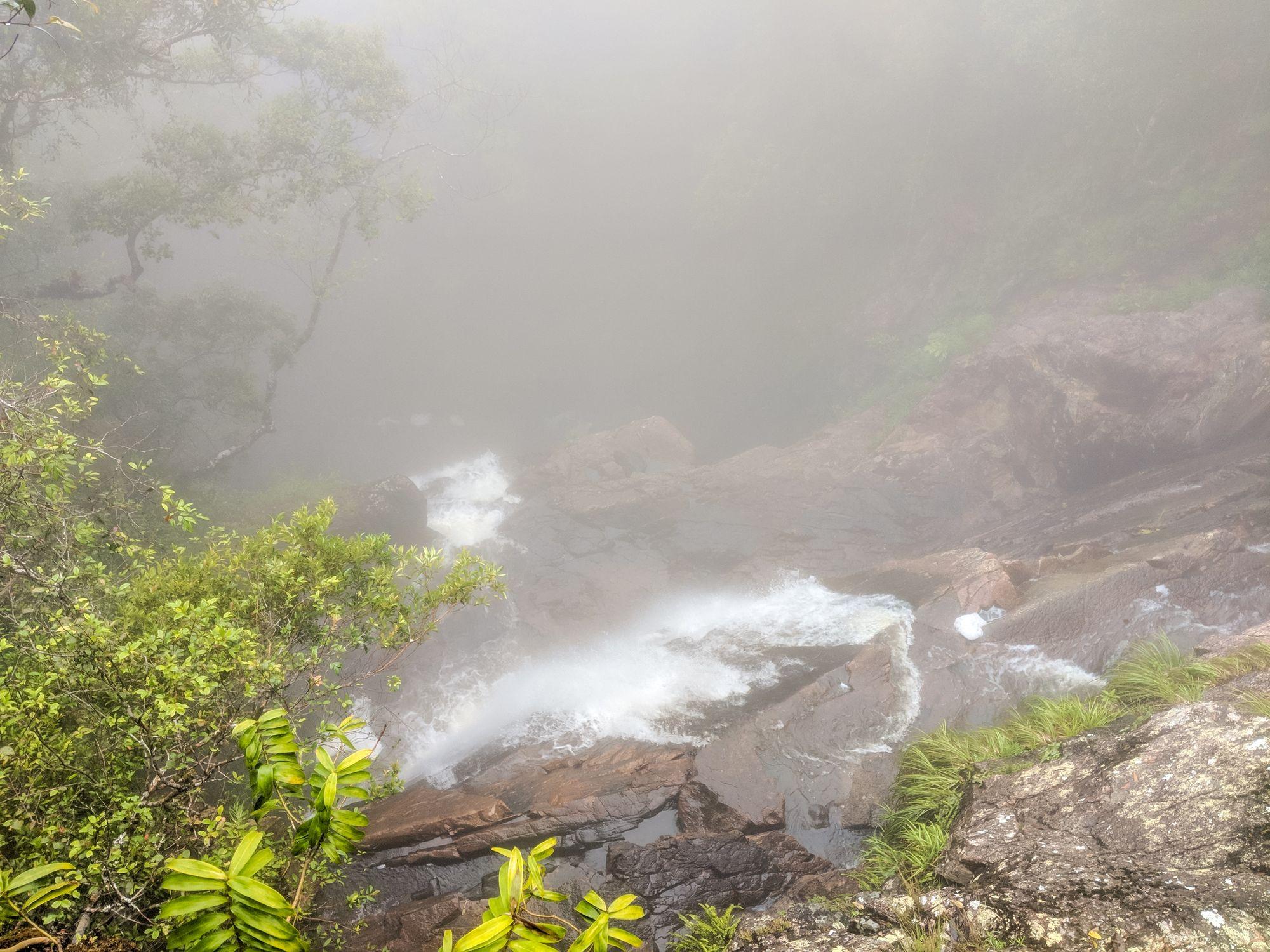 top of gold creek falls paluma