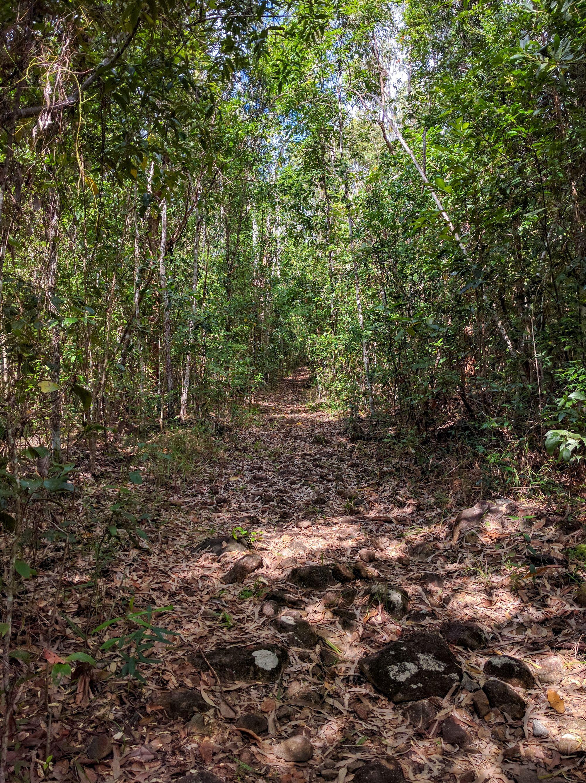 Dalrymple Gap Track walk