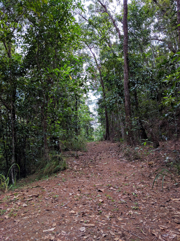 Dalrymple Gap Walking Track 1