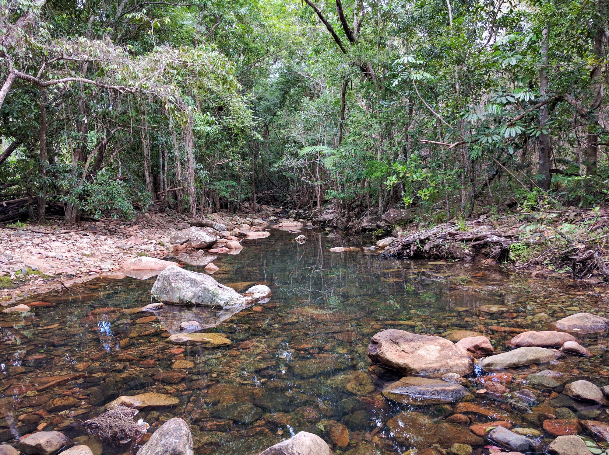 Dalrymple Gap Walking Track creek crossing