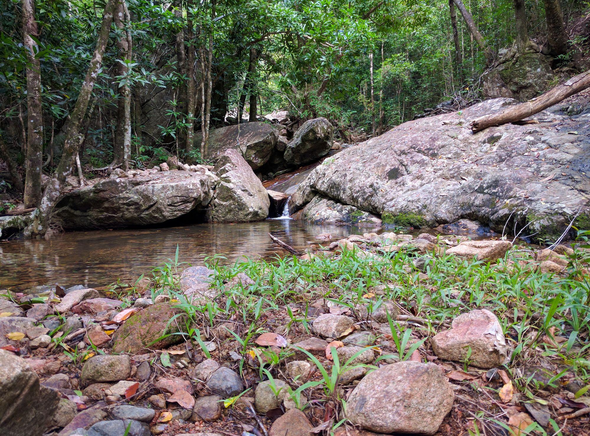 Dalrymple Gap Walking Track creek