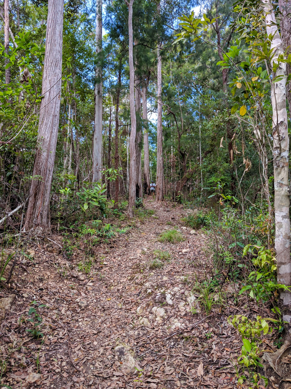 Dalrymple Gap Walking Track hike